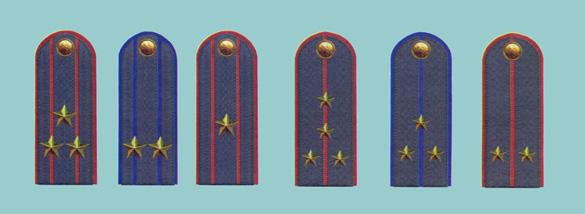 погоны генерала полиции нового образца фото - фото 6